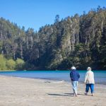 Couple walking along the lake